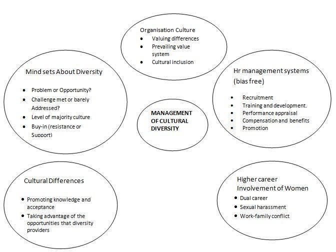 types of diversity management