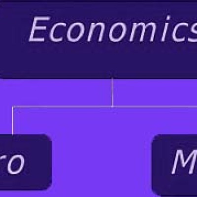 I need help in economics dissertation?